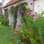 Mein Gartenparadies