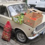 Wochenmarkt in Varna, Bulgarien
