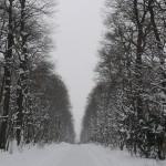 Winterlandschaft in Schönbrunn